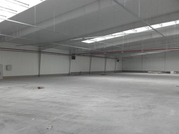 hale o konstrukcjach stalowych